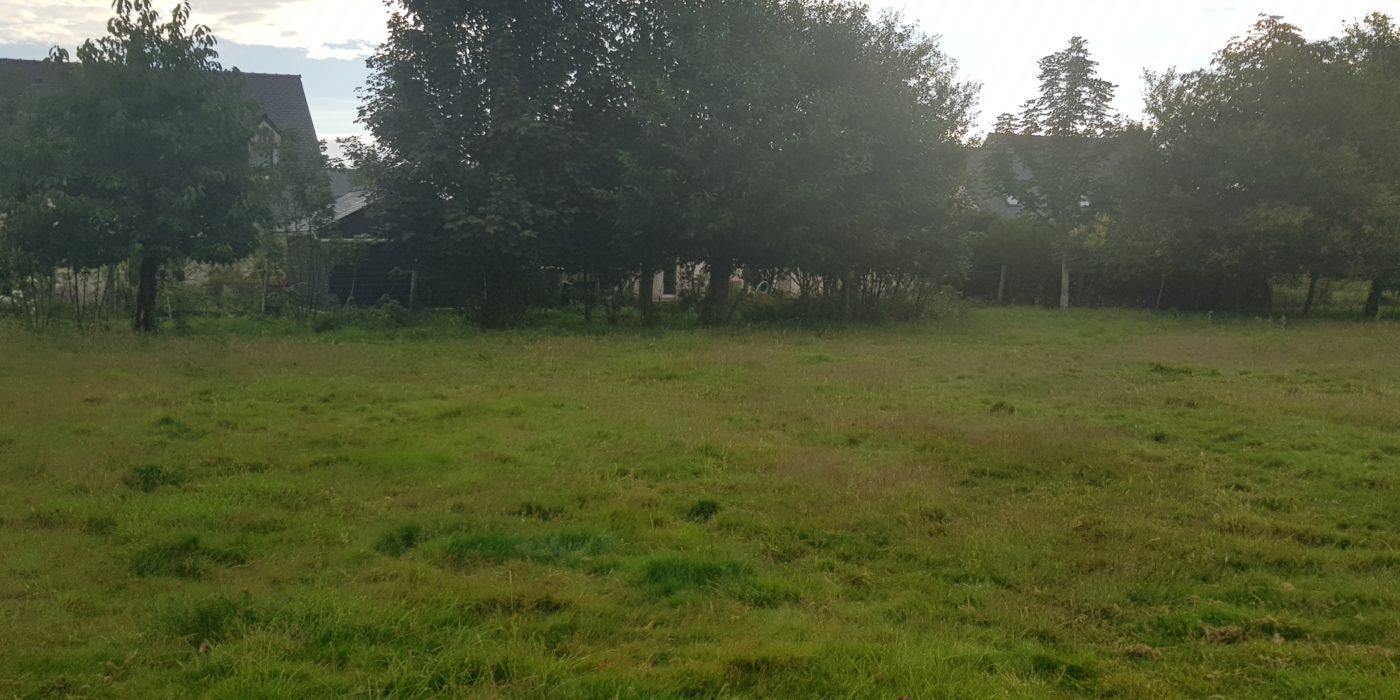 terrains à Montauban-de-Bretagne